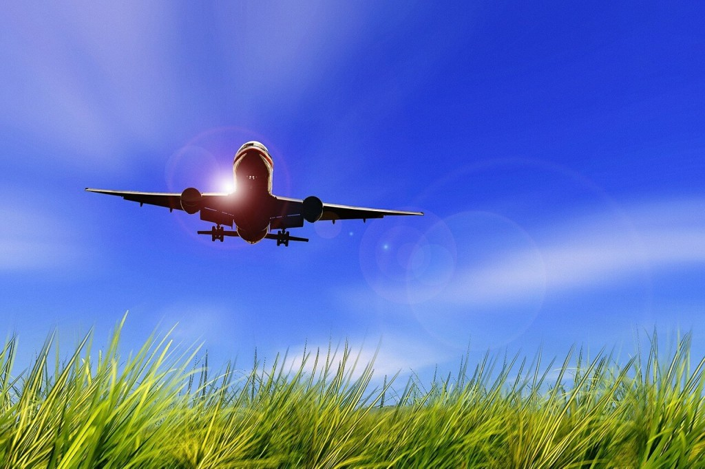 The fear of flying - Treatment